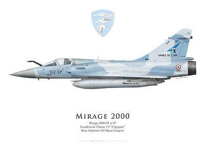 "Print Mirage 2000-5F, EC 1/2 ""Cigognes"", French Air Force (par G. Marie)"
