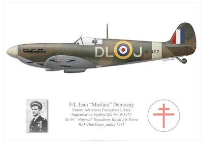 Print Spitfire Mk Vb, Jean Demozay, No 91 Sqdn, Royal Air Force (par G. Marie)