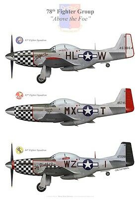 Print P-51D Mustang of the 78th Fighter Group (par G. Marie)