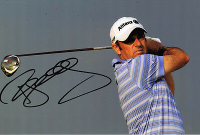 Paul McGinley SIGNED in Person Autograph 12x8 Photo AFTAL COA Irish Golf Player