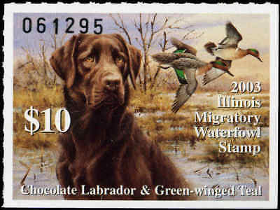 ILLINOIS #29 2003 STATE DUCK STAMP CHOCOLATE LAB/GREEN WNGED TEAL  by Jim Killen