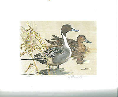 TEXAS #2 1982 STATE DUCK STAMP PRINT PINTAILS by Carlson List $500