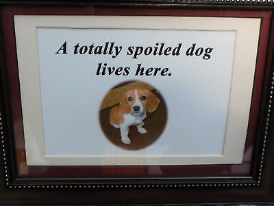 Totally Spoiled Dog Lives Here Print With Animal Photo