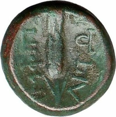 AMPHIPOLIS 187BC Rare Ancient  Greek Coin APOLLO Ear of grain  i25309