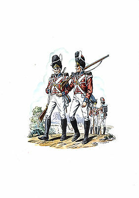 The Royal Welsh Fusiliers 23rd Regiment of Foot 1805 - Limited Edition print
