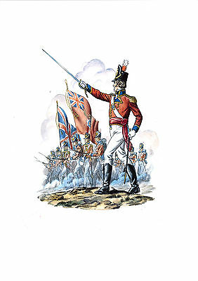 The Coldstream Guards 2nd Regiment of Foot 1815 - Edition limited to 100