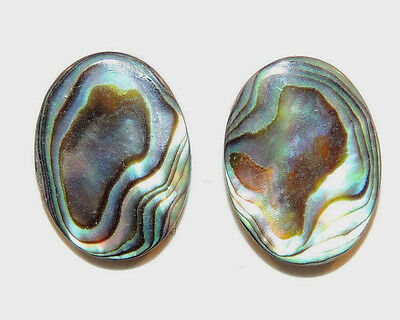 Abalone 15x20mm with 4mm dome Cabochon Set of 2 (2162)