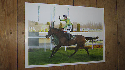 Kauto Star Horse Racing Legend Great Fist POSTER