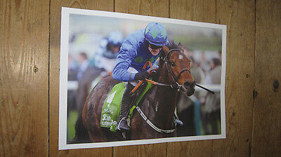 Hurricane Fly Horse Racing Legend POSTER