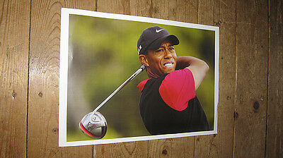 Tiger Woods Golf Legend Great New Swing POSTER