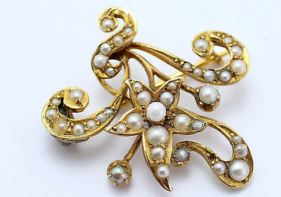 Art Nouveau Yellow Gold Seed Pearl Fancy Floral Spray Brooch