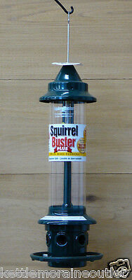 Brome Squirrel Buster Plus Bird Feeder Squirrel Proof Feeder #1024