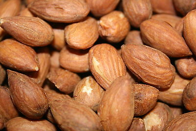 ALMONDS Fresh Bulk ROASTED SALTED Whole Sweet California Almond Kernels 5lbs