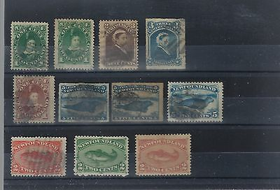 Newfoundland better used lot nice material