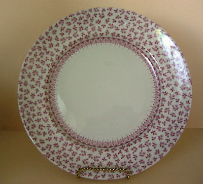 WOOD & SONS FINE TABLEWARE PETITE ROSE PLATE - EXCELLENT CONDITION