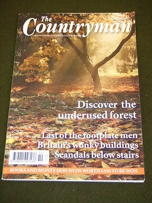 The Countryman - Wonky Buildings - Oct 2011 Vol 117 #10