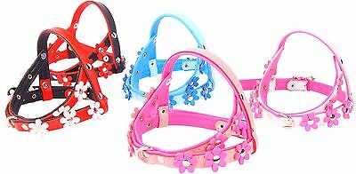 Real SOFT LEATHER DOG PUPPY HARNESS FLOWER Designer COLOUR PADDED Handmade