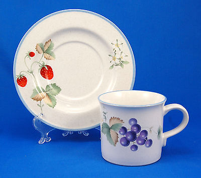Savoir Vivre LUSCIOUS JJ017 Flat Cup and Saucer Set 3 in. Fruit Blue Speckled