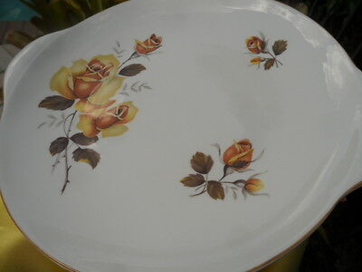 SHELLEY   * YELLOW - BROWN WILD  ROSE *  LARGE  TWO HANDLE CAKE PLATE - MINT