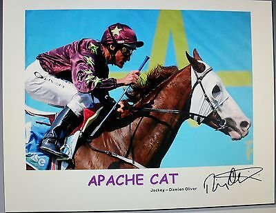 APACHE CAT signed Print