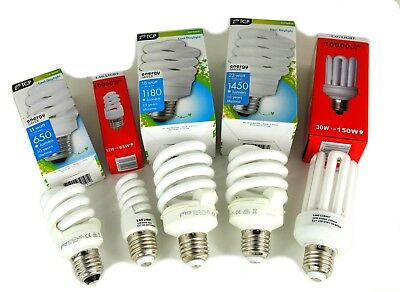 Bright White CFL lightbulbs - Daylight SAD 6500k low energy saving light bulbs