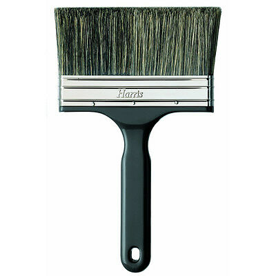 """Harris T Class Contractor Wall Brush 125mm 