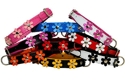 LEATHER DOG Puppy COLLAR Daisy FLOWER Decorated Colorful Handmade