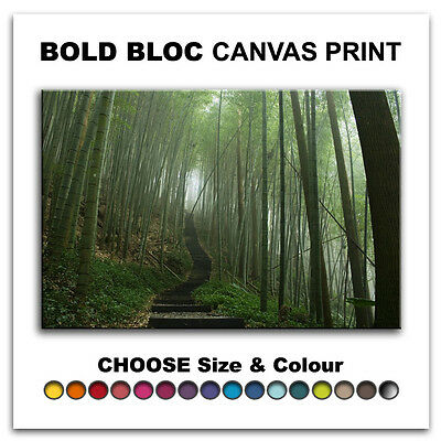 Japanese Forest LANDSCAPES  Canvas Art Print Box Framed Picture Wall Hanging BBD