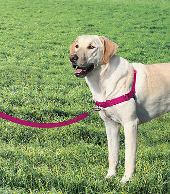 Premier/Petsafe Easy Walk Harness Stops dogs pulling Large size
