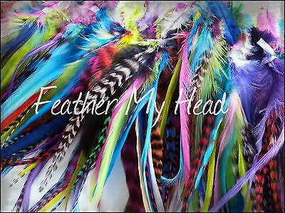50 Pc Whiting Wide Feather Hair Extension / Grizzly Bright Colors / Wholesale