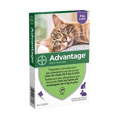 Advantage Anti-puces pour Chat ( 4 kg) - 4 pipettes