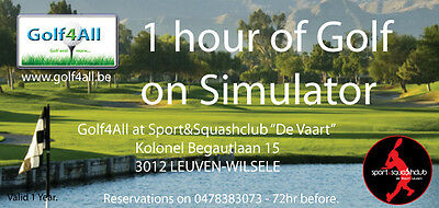 1 hour on Golf Simulator