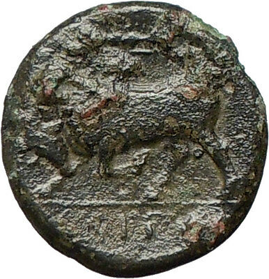 SYRACUSE in Sicily 275BC King HIERON II Kore & Bull Ancient Greek Coin  i24855