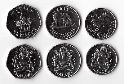 Malawi - New Issue 3 Dif Unc Coins Set: 1 - 10 Kwacha 2012 Year Elephant Eagle