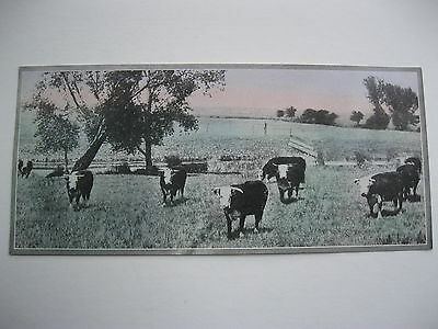 """VINTAGE 1920's SMALL  8"""" by 3 5/8"""" COWS CATTLE CALENDAR SAMPLE PRINT LITHO #51"""
