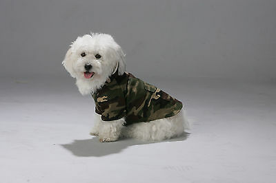 Dog Camouflage set (leash and Collar included) in Gift Box NEW in 3 themes