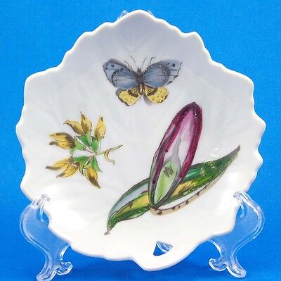 Mottahedeh THE EXOTIC PLANT (Floral E) Leaf Dish 4.875 in. Assorted Floral