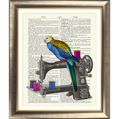 ART PRINT ON ANTIQUE DICTIONARY PAGE Sewing Machine parrot Bird  VINTAGE retro