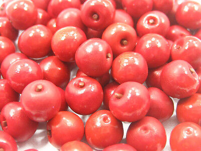 Dollhouse Miniature Food Lot 50 Red Apple Fruit Supply Deco WHOLESALE LC1F  6881