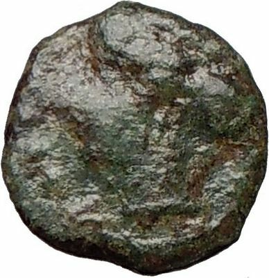HIMERA Sicily 420BC Ancient Greek Coin Nymph & LAUREL WREATH of success   i25037