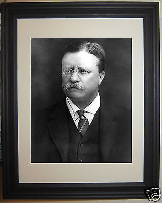 President Theodore Roosevelt Framed Portrait Photo Picture #b1