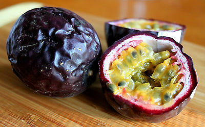 Passionfruit PURPLE GIANT 8 Seeds (HEIRLOOM) Passion Fruit