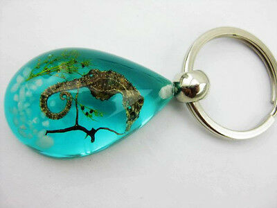Wholesale 20Pcs Real Sea Dragon Dream Blue Amber Fine Xmas Gift Key-Chains