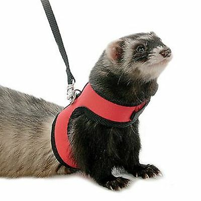 Kaytee / Super Pet Medium Comfort Harness Random Colors