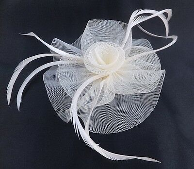 Looped Net Fascinator With Centre Swirl On A Forked Clip & Brooch Pin, 4 Colours