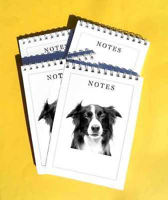 Border Collie Dog Pack of 4, A6 Notepad Gift Set