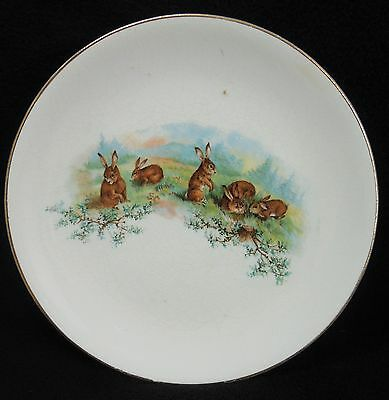 Antique Knowles T & K Co Semi-Vitreous Porcelain Plate Rabbits in Field S13-155