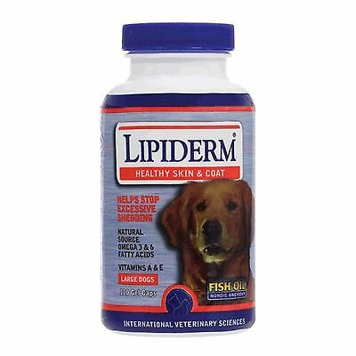 International Veterinary Sciences Lipiderm Large Dogs 120 Gel Caps