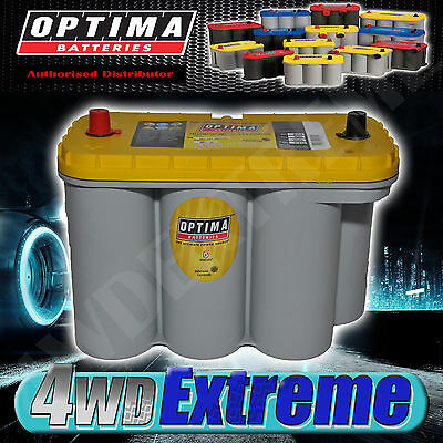 Optima Yellow Top D31A Battery 12 Volt Agm 900Cca Deep Cycle Suit N70Zz And N70Z