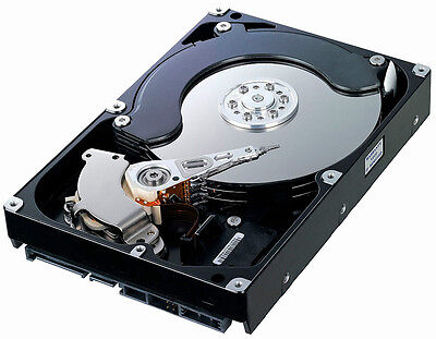 "Lot of 5: 320GB SATA 3.5"" Desktop HDD hard drive **Discounted Price"